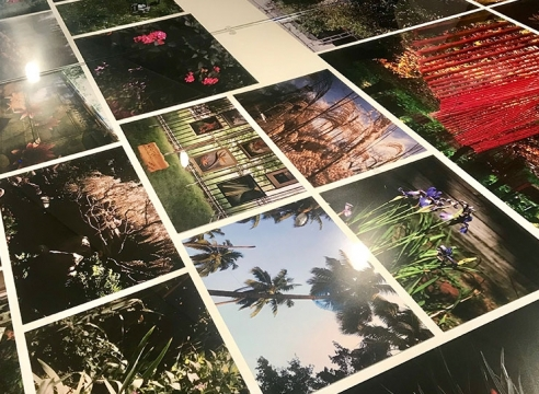 New show at Neubauer Collegium is a different take on flower power