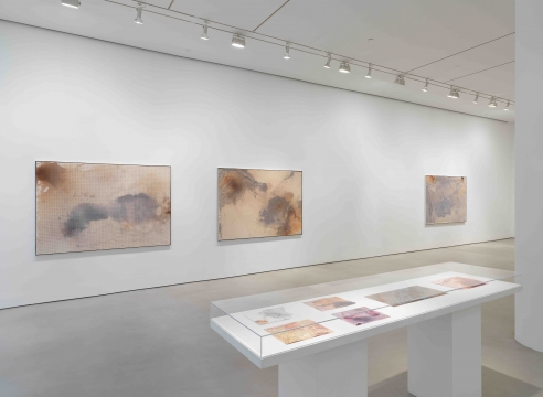 Daniel Lefcourt, Terraform installation view