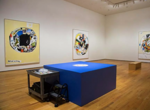 At the Rose and Davis museums, in between representation and abstraction