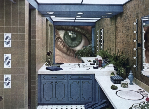 Martha Rosler, Bathroom Surveillance