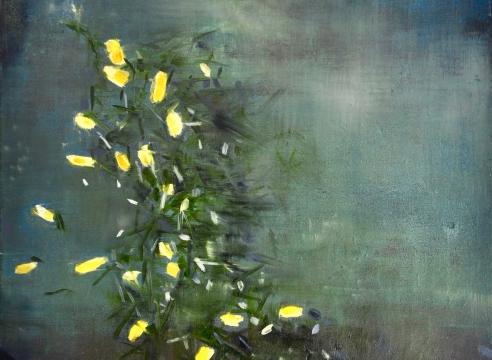 Jane Ansell