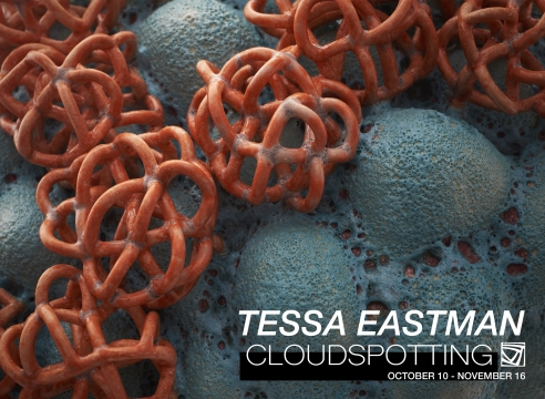 Tessa Eastman: CLOUDSPOTTING
