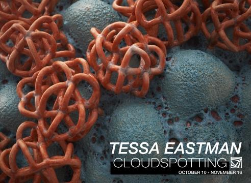 Tessa Eastman: CLOUDSPOTTING