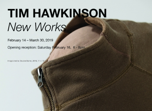 Tim Hawkinson, New Works