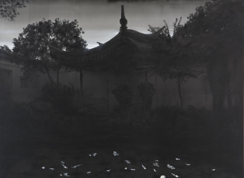 Seasons: Hong Lei's Recent Works