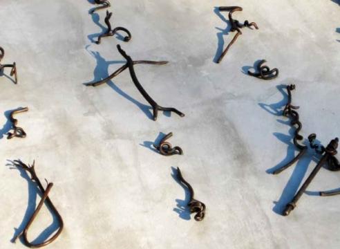 Cui Fei interprets the natural world, by Christoper Calderhead