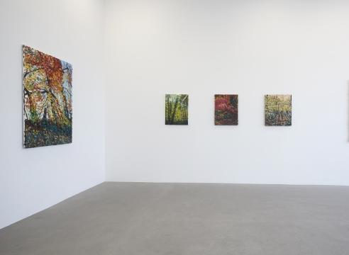Robert Terry | The Landscape