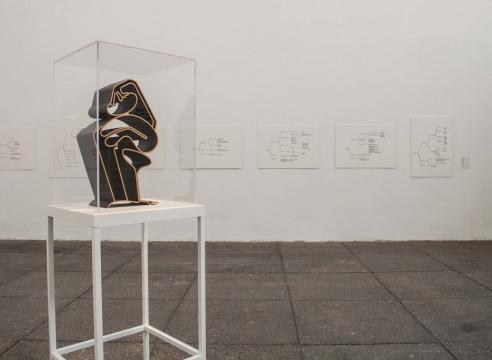 Teresa Burga: Profile of the Peruvian Woman (1980-1981)
