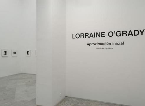 Lorraine O'Grady: Aproximación Inicial