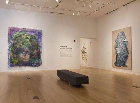 Firelei Baez at DePaul Art Museum