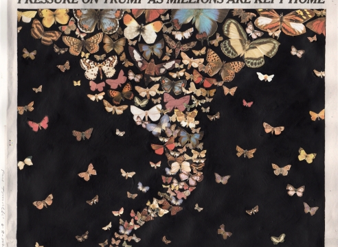 Simon Evans™ and Fred Tomaselli at The Drawing Center