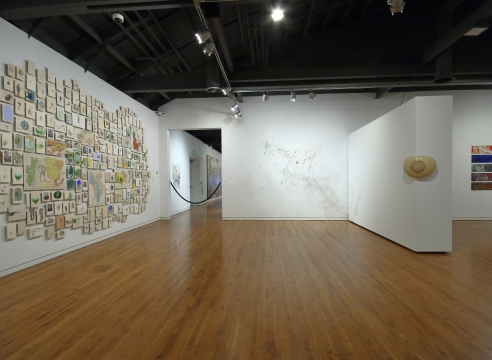Firelei Báez at the Museum of Latin American Art