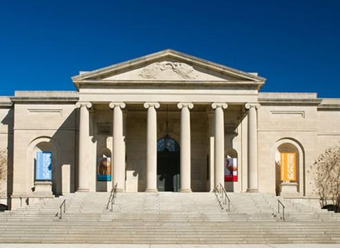 Firelei Báez at Baltimore Museum of Art