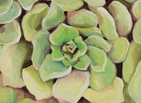 ROBIN GOWEN , Succulent