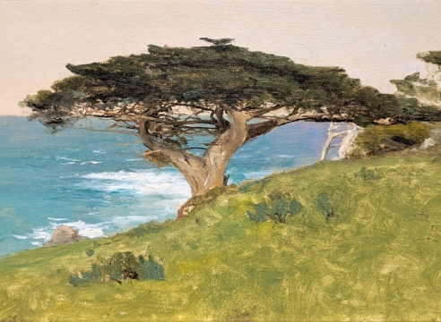"LOCKWOOD DE FOREST (1850-1932), ""Point Lobos""  Veteran Tree (Monterey), January 29, 1911"
