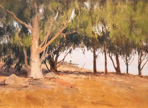 LOCKWOOD DE FOREST (1850-1932), View Through Eucalyptus Trees To The Rincon, Nov. 1911