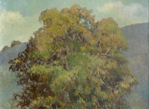 MEREDITH BROOKS ABBOTT, The Eucalyptus, 2019