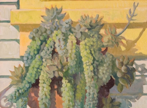 MEREDITH BROOKS ABBOTT: Homestead with Succulents as an example