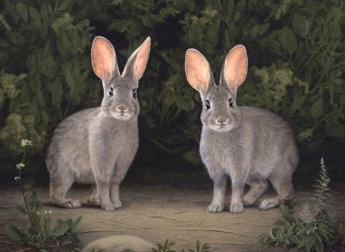 SUSAN MCDONNELL, Marsh Hares, 2020