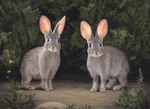 SUSAN MCDONNELL, Marsh Hares, 2020