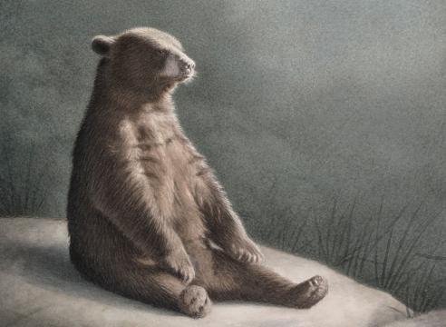 SUSAN MCDONNELL, Buddha Bear, 2019