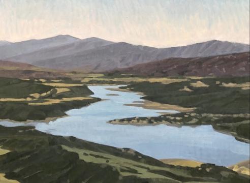 Lake Cachuma Aerial painting by Nicole Strasburg