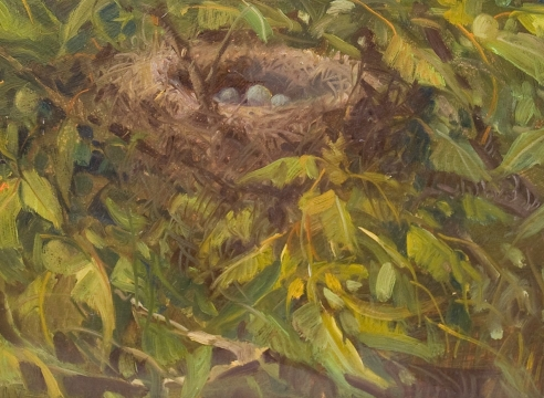MEREDITH BROOKS ABBOTT, Nest in the Apricot Tree, 2019