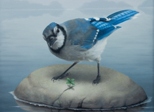 SUSAN MCDONNELL, Blue Jay, 2019