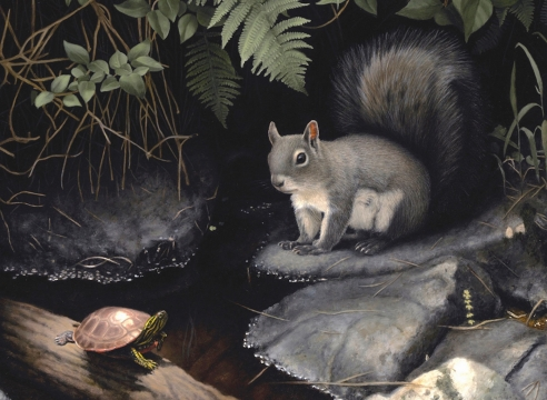 SUSAN MCDONNELL, Turtle and Squirrel, 2020