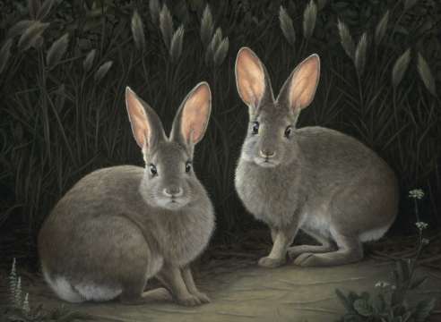 SUSAN MCDONNELL, Two Marsh Hares, 2021