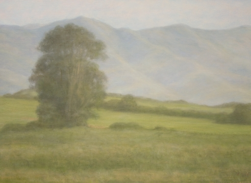 Sarah Vedder, Spring Green