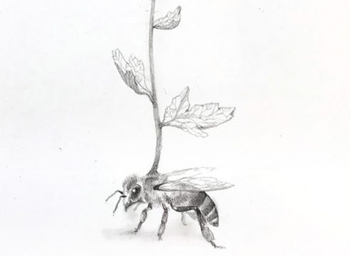 ADONNA KHARE, Bee and Flower, 2021