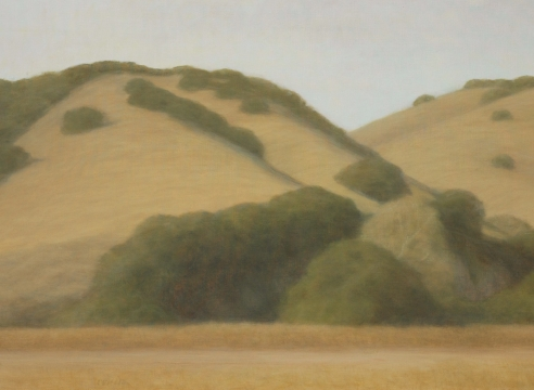 SARAH VEDDER, The Gold Hills, 2006