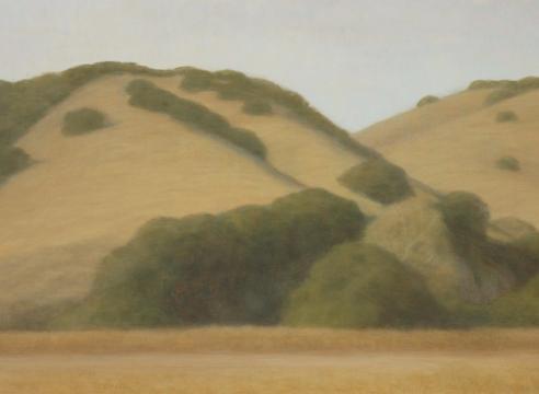 SARAH VEDDER, The Gold Hills, 2006