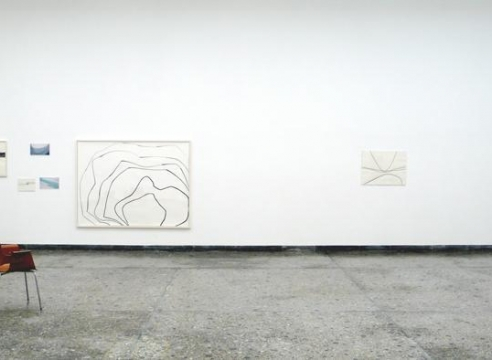 Silvia Bachli: The Swiss Pavilion at the 53rd International Art Exhibition