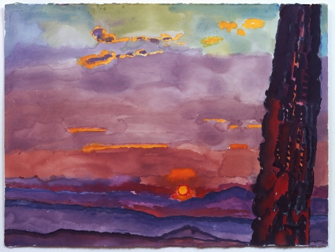 Graham Nickson: Italian Skies