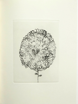 """""""...Louise Bourgeois was a force of nature..."""""""