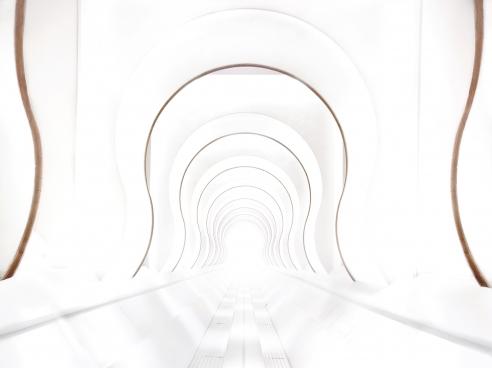 Photos capture stunning interior architecture