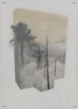 "Brooks Salzwedel - ""Vanilla Sky"""