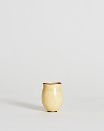 Elegant Vase
