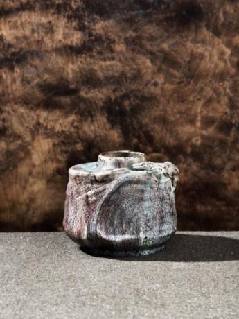 Fire Salamander Vase