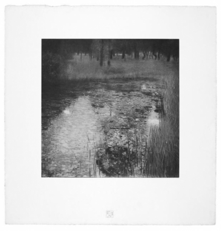 The Swamp from Das Werk Gustav Klimts printed in 1908-1914