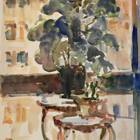 FIG PLANT AND CITY WINDOW