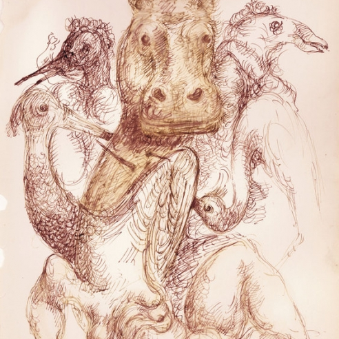 Drawing in red ink on white paper of realistic, large birds with a hippo in the center. The birds have long necks and look similar to peacocks or swans.