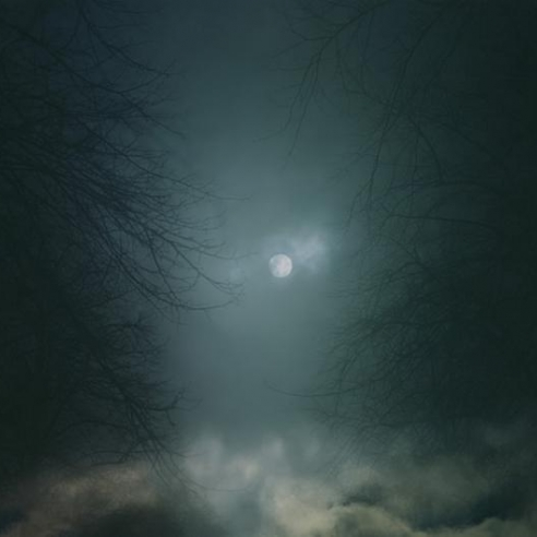 In Darkness Visible, Verse I (2005-07)