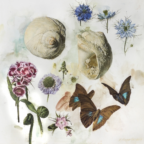 "Image of Jeffrey Ripple's ""Shells, Butterflies, and Flowers"" Oil on panel, 12 by 12 inches, painted in 2018."