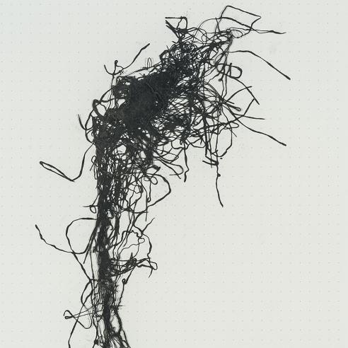 Lily Cox-Richard (b. 1979)