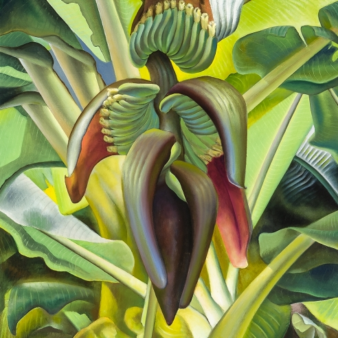 ROSS EUGENE BRAUGHT (1898–1983), Banana Tree, 1937. Oil on canvas, 43 x 43 in. (detail).