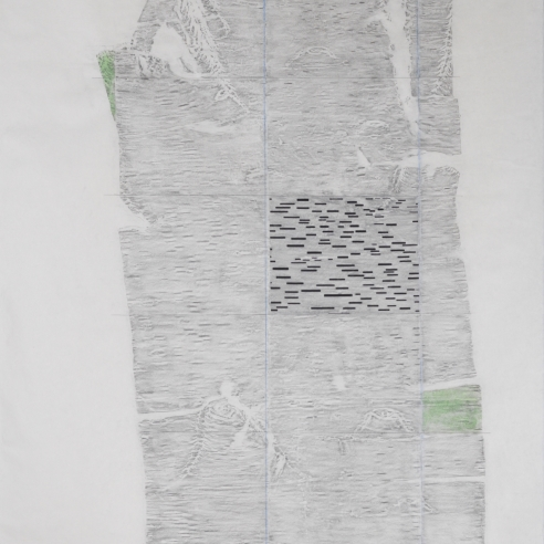 a work on paper by Maria Elena Gonzalez combining a rubbing of birch bark with abstract elements like thick dash lines and green rectangles