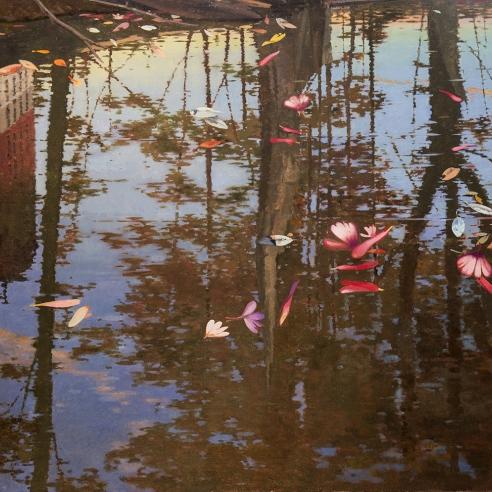 flower petals floating on a river